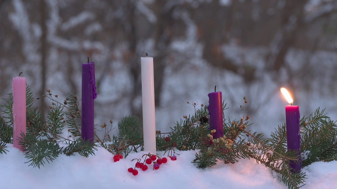 Homily for the first Sunday of Advent